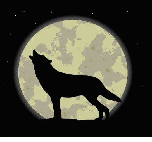 Canine Howls at the Moon