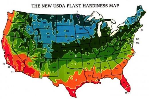 US Plant Hardiness Zones:    Source: aggie-horticulture.tamu.edu