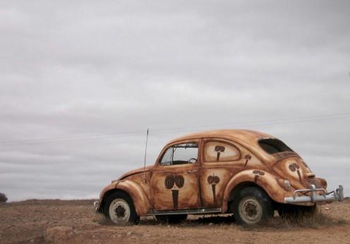 Bugged Beetle in Broken Hill, NSW.