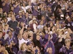 Cheering Crowds