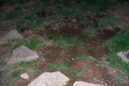 Problem: septic system malfunction