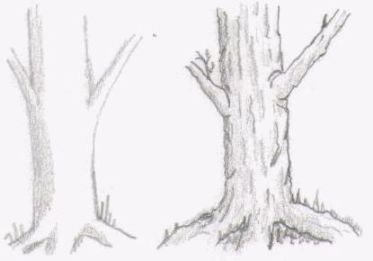 Texture Example: 5