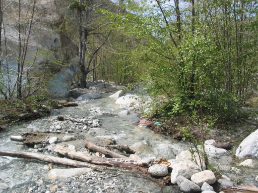Mill Creek, sloshy with rain run-off from Winter Storms.
