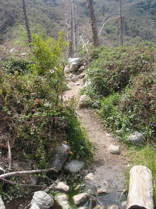 The trail is narrow and easy to follow--I saw many children there with their families the day I shot these photos.
