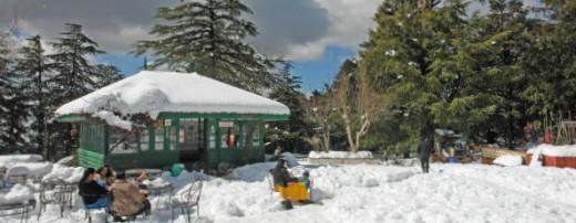 Tourist Park at Kufri Shimla