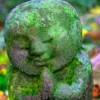 MeditateForPeace profile image