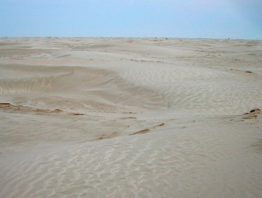 DESERTIFICATION OF ARAL SEA