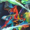 Jeff Gode profile image