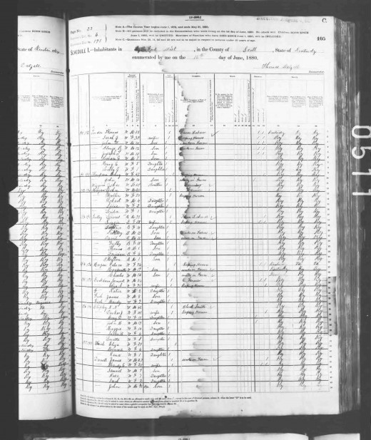 Image of 1880 Census