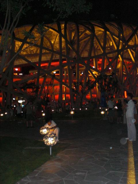 Bird's Nest by night