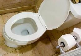Shut that lid before flushing