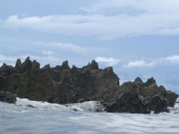 Deadman's Reef at Paradise Cove. Swim to this rock, its where all the fish hide!