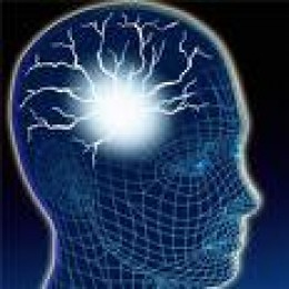Image Source Address: http://www.topnews.in/health/diseases/brain