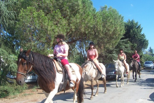 Horseback riding before the cruise?