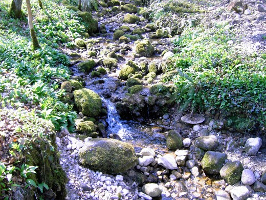 babbling brooks cascade down the slopes D.A.L.
