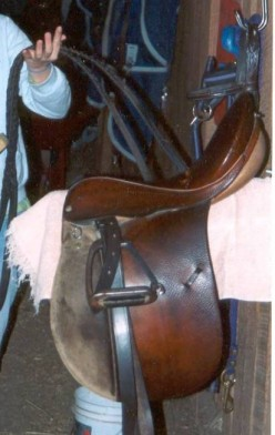 Care and Cleaning of Horse Equipment