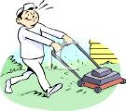 Basic Lawn Care and Yard Maintenance