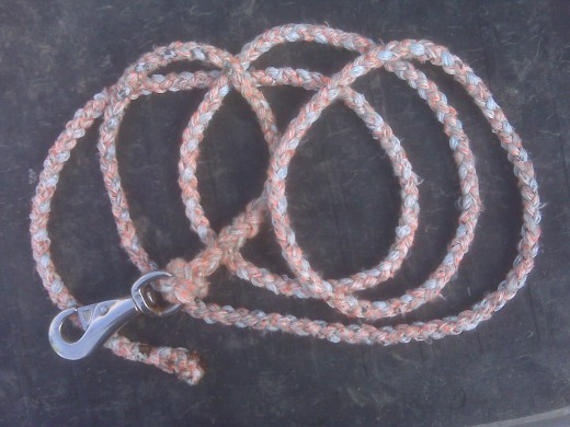 Leadrope with snap. Complete and 12 feet long.