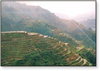 BANAWE RICE TERRACES -8TH WONDER OF THE WORLD (Photo Credit: http://www.aerotourtravel.com/)
