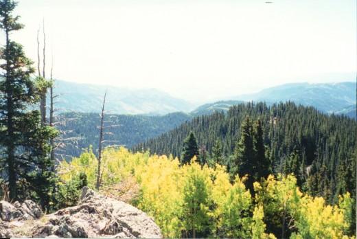 Gunnison National Forest - Colorado