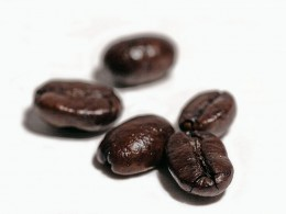 A perfect cup of cafe con leche starts with the right coffee beans.
