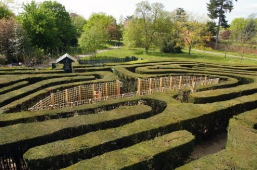 The Hampton Court Maze