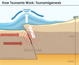 One of the events that trigger tsunamis is under sea earthquakes