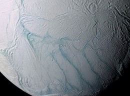Traces of the compounds of life have been found on Enceladus.