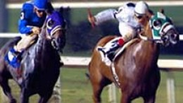 Horse Racing Memorablia