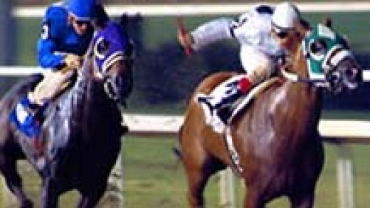 Horse Racing Memorablia