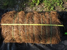 Bale of pine straw tied together with string