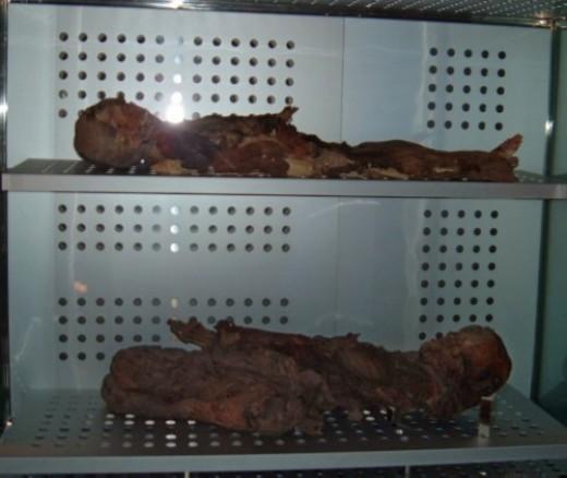 Guanche mummies