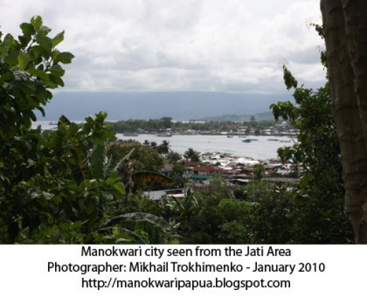 the capital of West Papua province in the tropical island of Papua