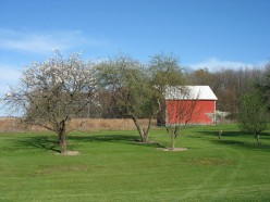 Dwarf Fruit Trees in the Home Orchard