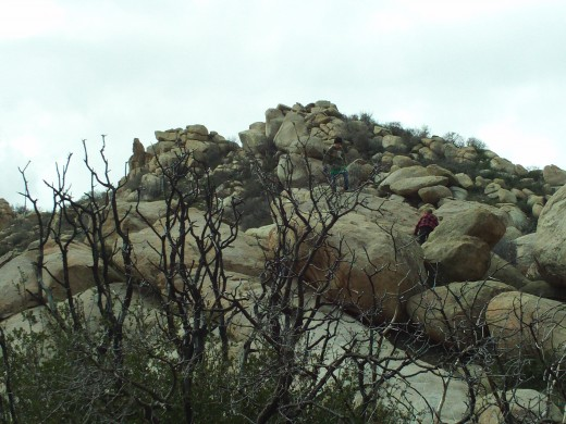 Climbing up on the big rocks out at The Pinnacles.