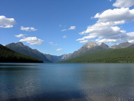 Bowman Lake, where we camped