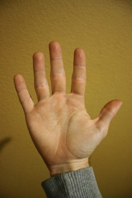 The thumb and all of the fingers are extended.