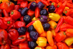 What are the Benefits of (Capsicum) Pepper