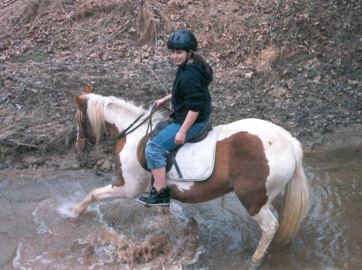 Horses  cannot judge depth, so this horse is testing the water.
