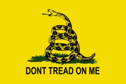 Don't Tread On Me Flag - The Significance of the Rattlesnake