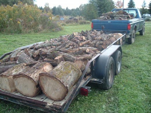 "A full load of wood for ""Old Blue"""