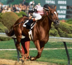 Affirmed, the last Triple Crown Winner.