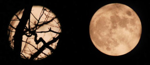 The full moon after midnight early this morning. These are two images merged as one. At left, is the moon through tree branches, at right is an unobstructed view that's more difficult to find in the yard when the moon doesn't rise high.