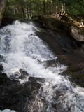 Alder Falls by Emily Glahn Eades