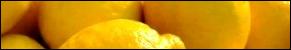 Lemon Experiments for Kids