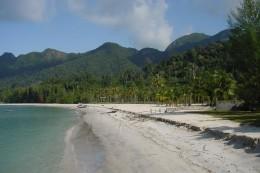 Lush greenery, Pantai Kok