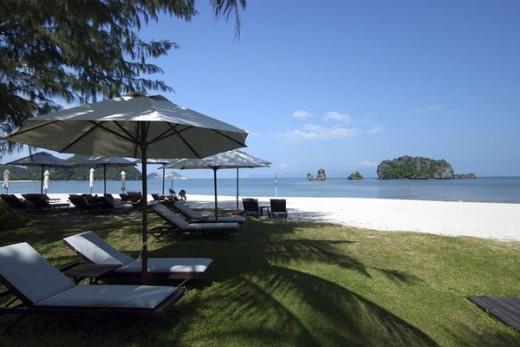 Casuarina shading the beach, Tanjung Rhu