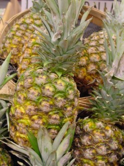 Information About Pineapples