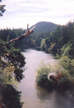 Photo Courtesy of Cliff Diving Website