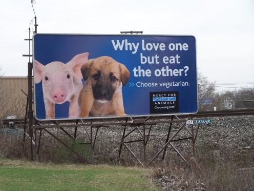 Mercy For Animals billboard in Ohio
